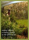 'summer shower / a cooling sparkle / in the white wine' by Adelaide Shaw