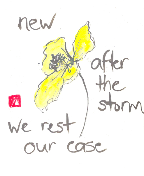 'new/after the storm / we rest our case' by Beth McFarland
