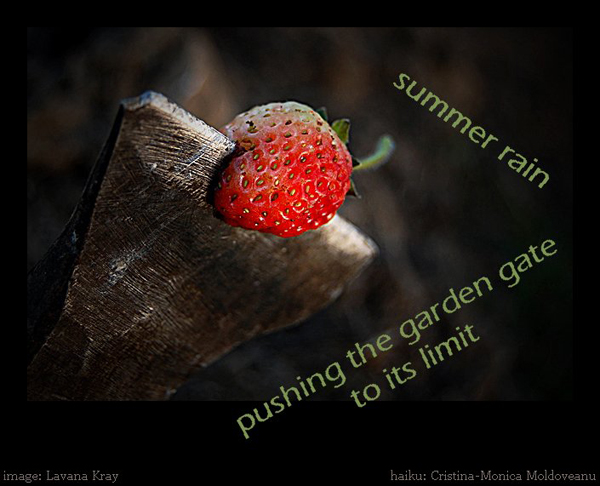 'summer rain / pushing the garden gate / to its limit' by Cristina-Monica Moldoveanu
