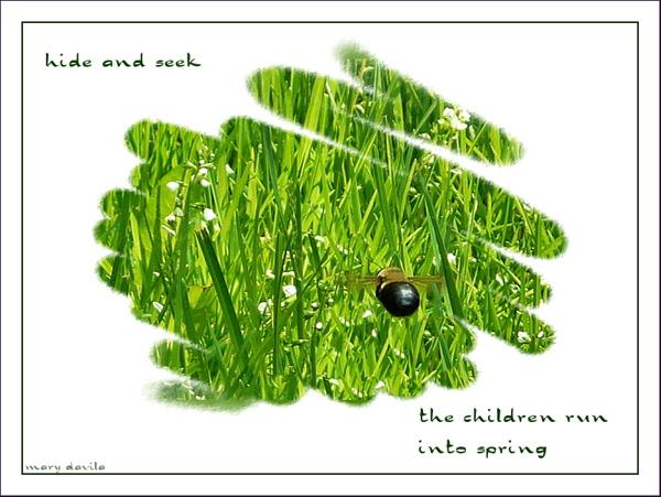 'hide and seek / the children run / into spring' by Mary Davila