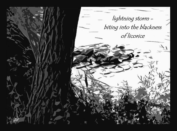 'lightning storm� / biting into the blackness / of licorice' by Lary Fraser.  Haiku first published in Ambrosia Issue 1, Autumn, 2008.