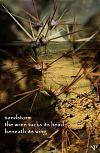 'sandstorm / the wren tucks its head / beneath its wing' by Nicole Pakan