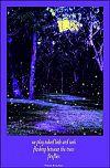 'we play naked hide and seek / flashing between the trees / fireflies' by Violette Rose-Jones