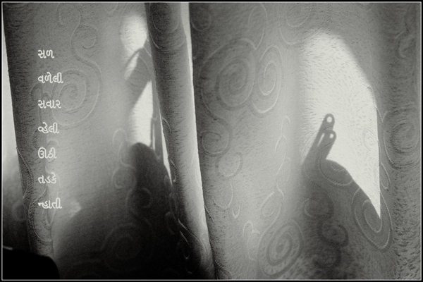 """""""creased morning / bathing in sunshine / from my bed' by Perpoto"""