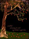 'windfall / returning to visit / my father's apple tree' by Ray Rasmussen