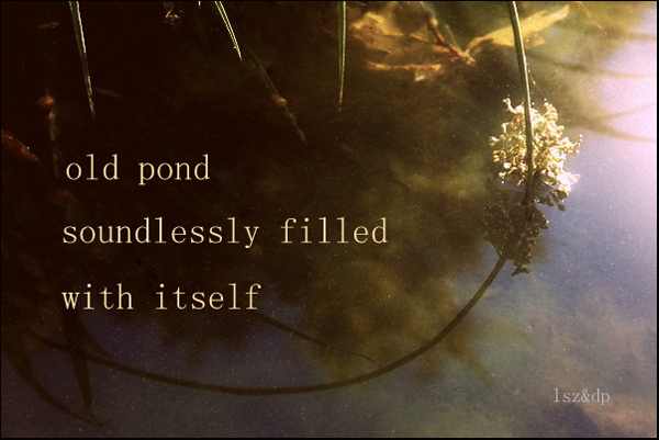'old pond / soundlessly filled / with itself' by Lech Szeglowski. Art by Dorota Pyra.