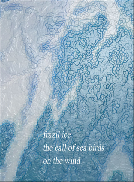 'frazil ice / the call of sea birds / on the wind' by Nicole Pakan