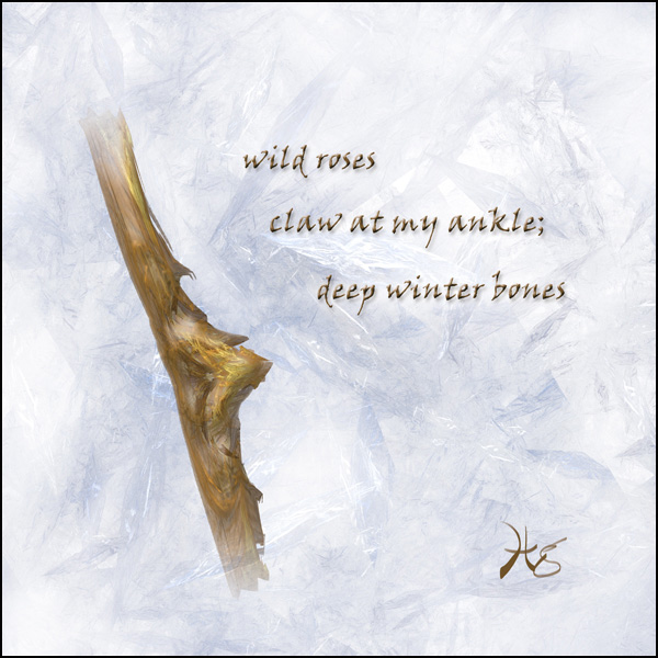 'wild roses / claw at my ankle; / deep winter bones' by Hg Mercury