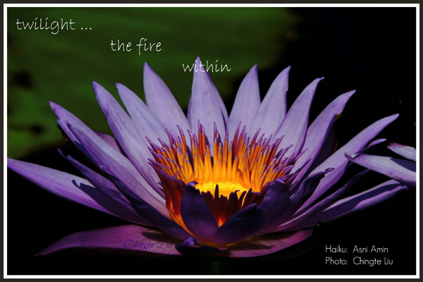 'twilight... / the fire / within' by Asni Amin