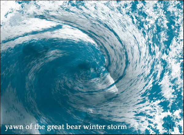 'yawn of the great bear winter storm' by Nicole Pakan