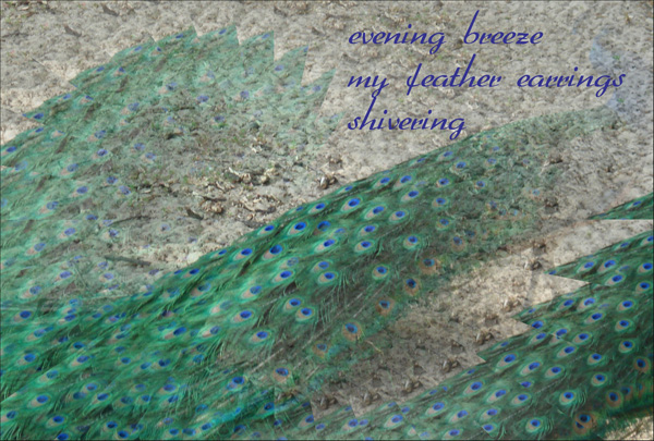 'evening breeze / my feather earrings / shivering' by Maria Tomczak