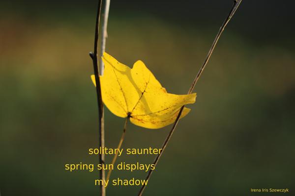 """'solitary saunter / spring sun displays / my shadow"""" by Irena Szewczyk"""