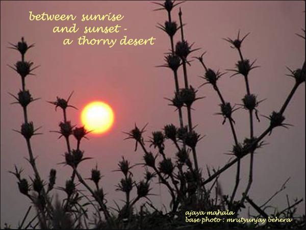 'between sunrise / and sunset� / thorny desert' by Ajaya Mahala. Art by Mrutyunjay Behera