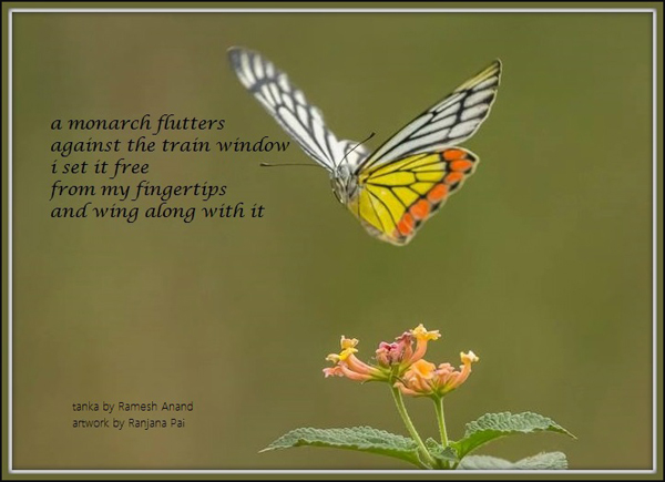 'a monarch flutters / against the train window / i set it free / from my fingertips / and wing along with it' by Ramesh Anand. Art by Ranjana Pai