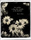 """'love necklace / a daisy chain trembles / on her heartbeat"""" by Ron Moss"""