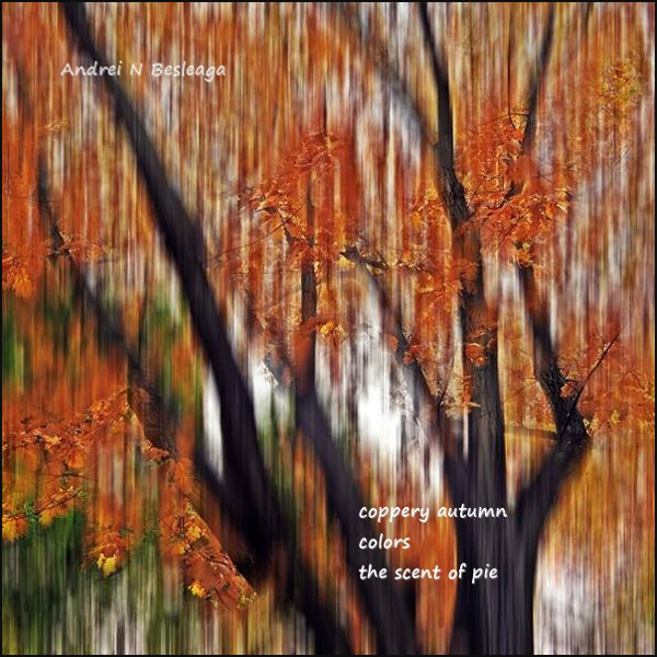 'coppery autumn / colors / the scent of pie' by Andrei Besleaga