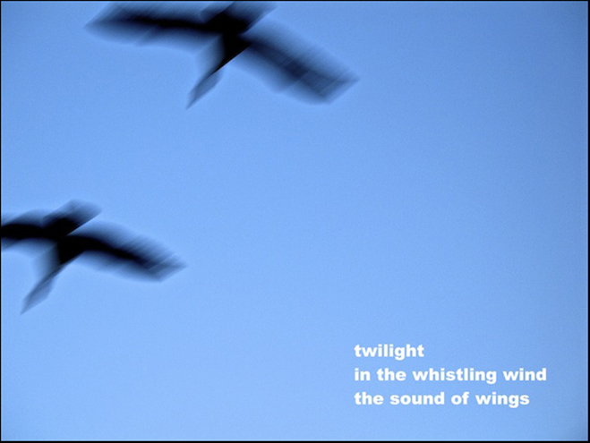 'twilight / in the whistling wind / the sound of wings' by Doug Norris