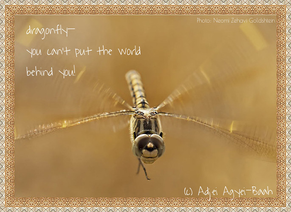 'dragonfly� / you can't put the world / behind you' by Adjel Abyei-Bah. Art by Neomi Zehavi Goldstein