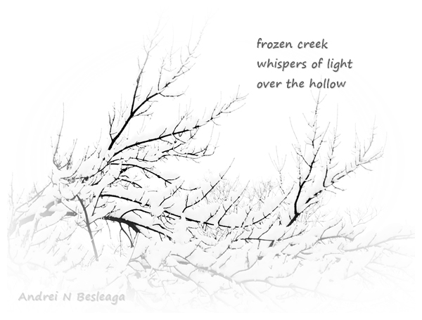'frozen creek / whispers of light / over the hollow' by Andrei Besleaga