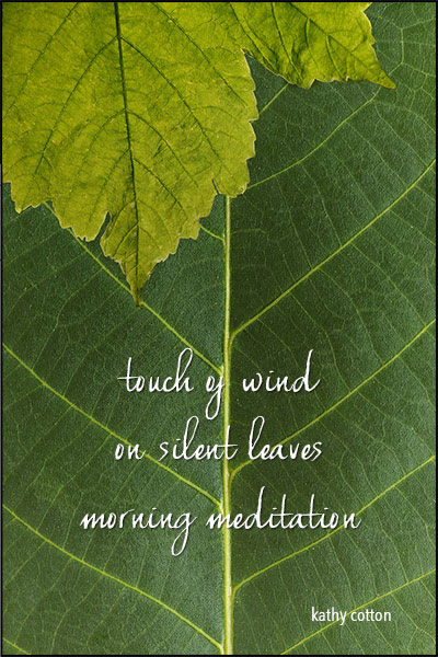 'touch of wind / on silent leaves / morning meditation' by Kathy Lohrum Cotton