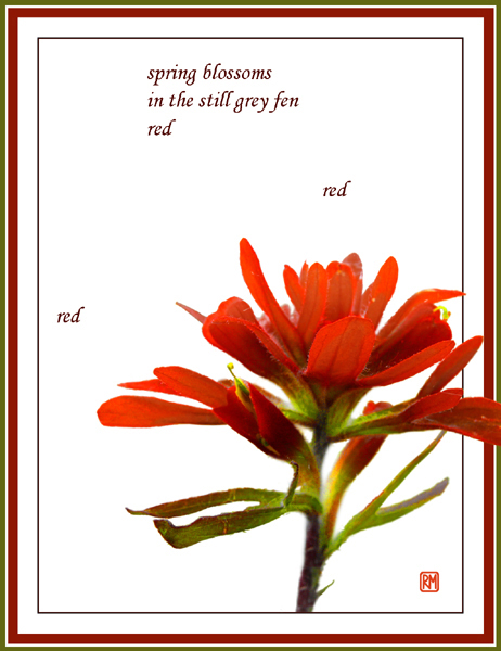 'spring blossoms / in the still grey fen / red / red / red' by Ruth Mittelholtz