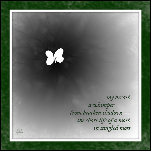 'my breath / a whimper / from bracken shadows� / the short life of a moth / in tangled moss' by Patrick M. Pilarski. Tanka from Huge Blue (Leaf Press, 2009); a version of this tanka first appeared in Wisteria, Iss. 13, 2009.