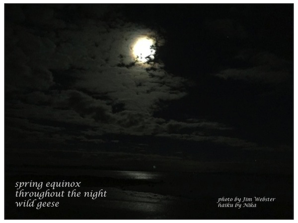 'spring equinox / throughout the night / wild geese' by Jim Force aka Nika. SArtby Jim Webster