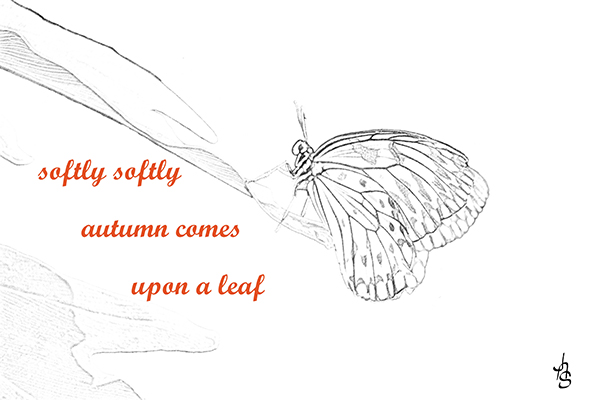 'softly softly / autumn comes / upon a leaf' by Albert Schepers
