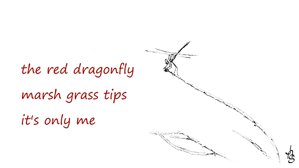 'the red daragonfly / marsh grass tips / it's only me' by Albert Schepers