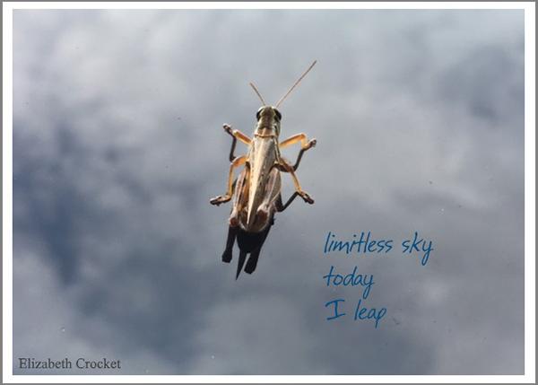 'limitless sky / today / i leap' by Elizabeth Crocket