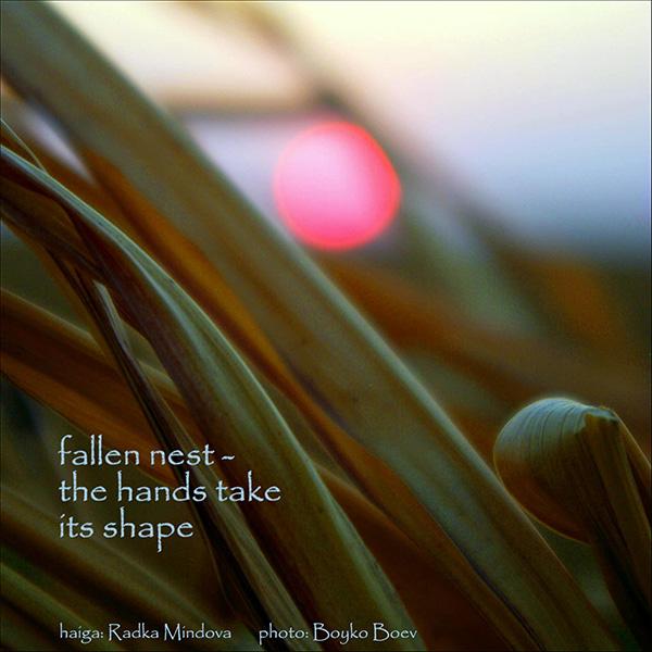 'fallen nest� / the hands take / its shape' by Radka Mindobve. Art by Boyko Boev