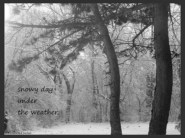 'snowy day / under the weather' by Elizabeth Crocket