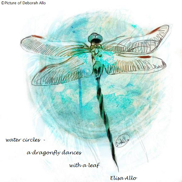 """""""water circles� / a dragonfly dances / with a leaf' by Elisa Allo. Art by Deborah Allo."""
