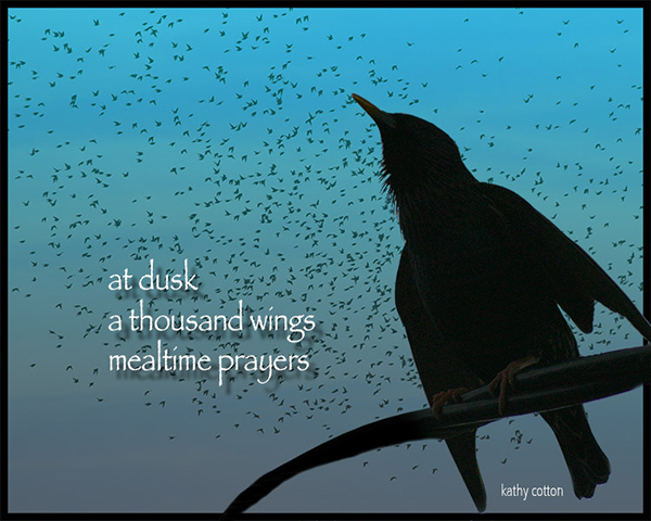 'at dusk / a thousand wings / mealtime prsayers' by Kathy Cotton.