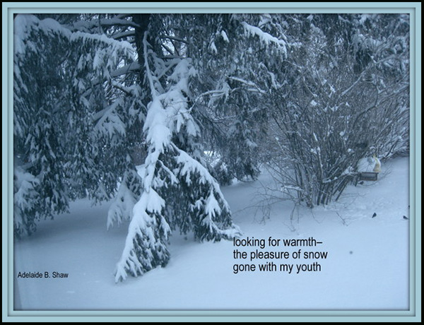 'looking for warmth� / the pleasure of snow / gone with my youth' by Adelaide Shaw