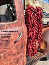 'burnt by desert sun / an old truck / hanging fire' by Keith Polette