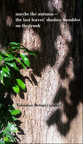 'maybe the autumn� / the last leaves' shadow trembles / on the trunk' by Valentina Meloni.