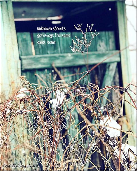 'unknown streets / gateways the same / as at home' by Radostina Dragostinova