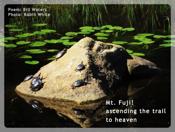 'Mt. Fuji! / ascending the trail / to heaven' by Bill Waters. Art by Robin White.