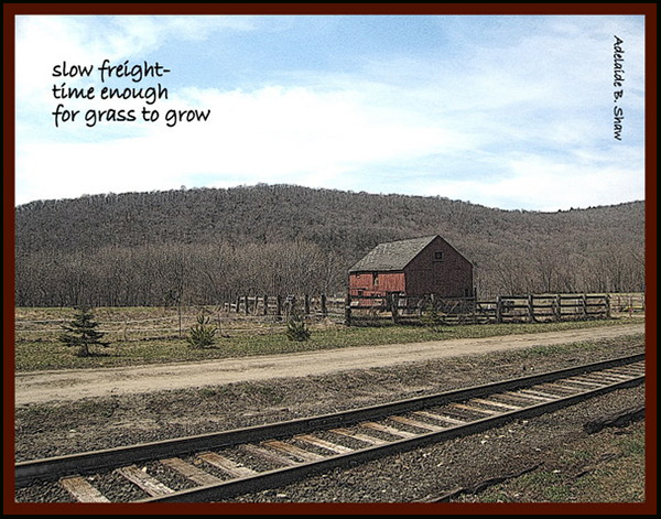 'slow freight— / time enough  / for grass to grow' by Adelaide Shaw