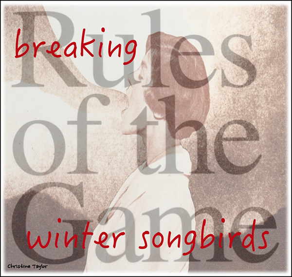 'breaking / the rules of the game / winter songbirds' by Christine Taylor