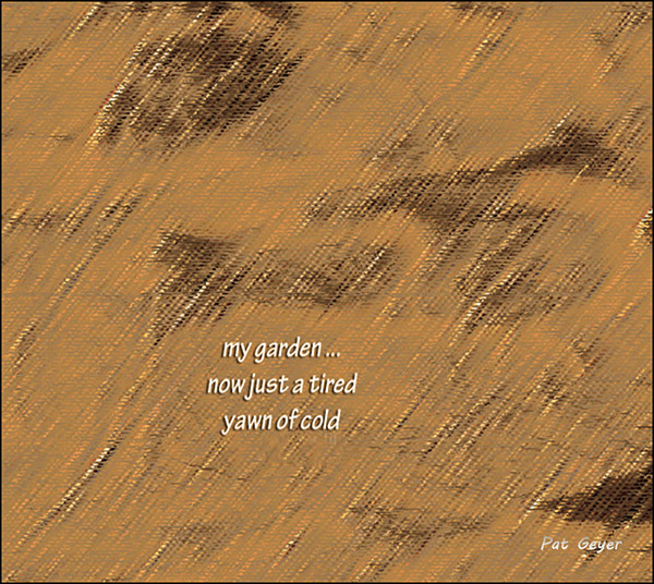 'my garden... / now just a tired / yawn of cold' by Pat Geyer