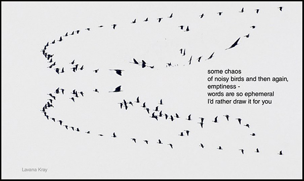 'some chaos / of noisy birds and then again, / emptiness— / words are so ephemeral / I'd rather draw it for you' by Lavana Kray