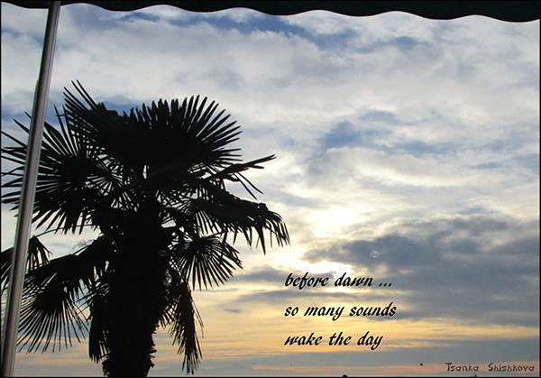'before dawn... / so many sounds / make the day' by Tsanka Shishkova
