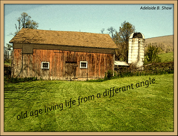 'old age living life from a different angle' by Adelaide Shaw
