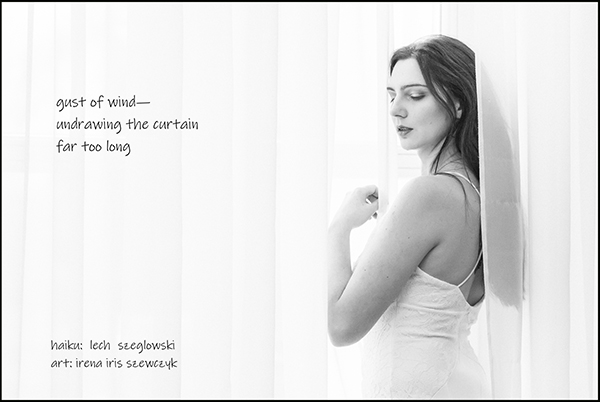 'gust of wind— / undrawing the curtain / far too long' by Lech Szeglowski. Art by Irena Szewczyk