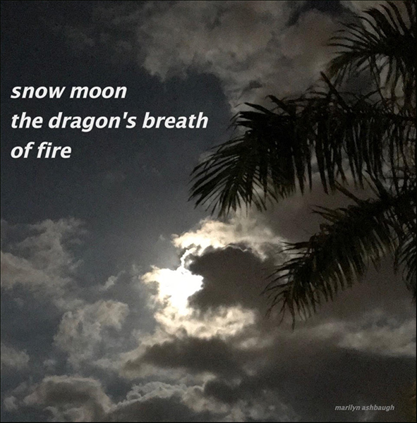 'snow moon / the dragon's breath / of fire' by Marilyn Ashbaugh.
