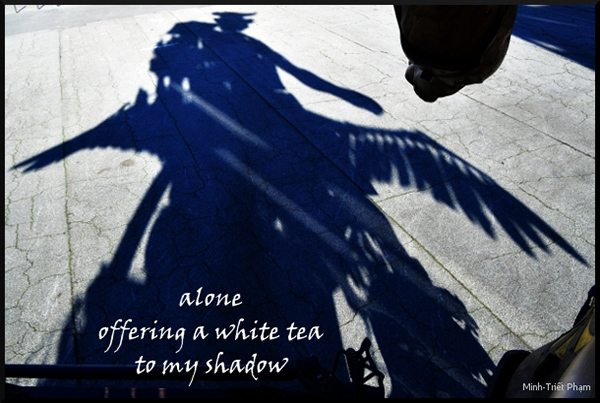 'alone / affering a white tea / to my shadow' by Minh-Triet Pham.  Haiku first published in 'Reflet aveugle / Blind reflection / Bóng hình mù quáng', ISBN 978-2-37355-060-3, Unicité, Saint-Chéron, 2016