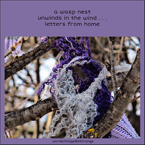 'a wasp nest / unwinds in the wind... / letters from home' by Debbie Strange.  Haiku first published in Presence 62 Nov 2018
