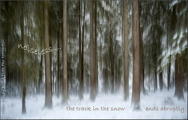 'noiseless... / the track in the snow / ends abruptly' by Claudia Brefeld. Art by Paul Bernhard